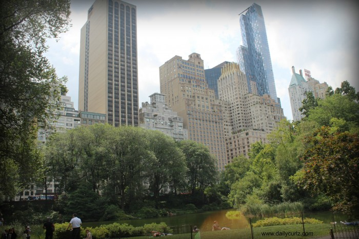 New_city_central_park