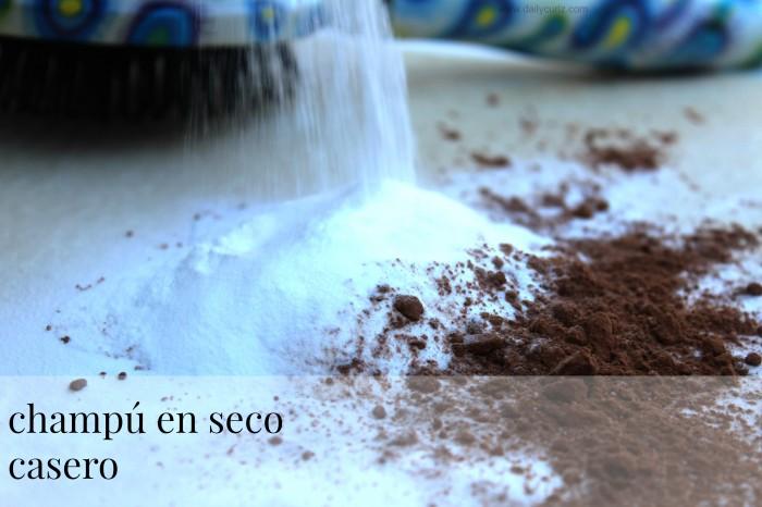 champu_en_seco_casero