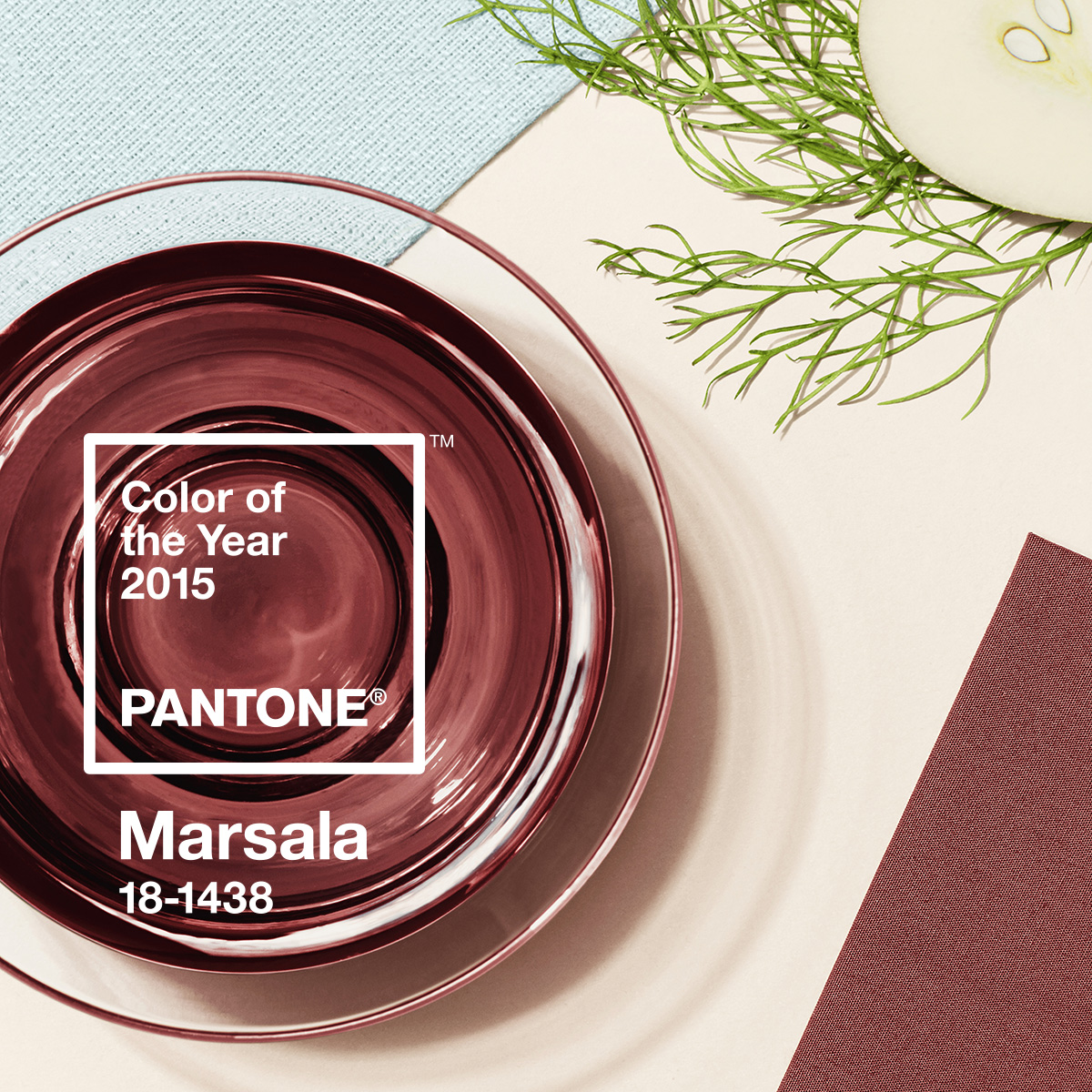 "Pantone Color of the year 2015 ""Marsala"" / El color del año 2015"